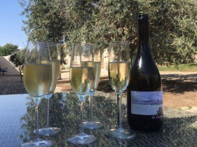 Lekkere wijn italie